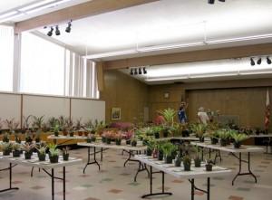 Shepard Garden and Arts Center Fall Sale 2015